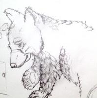 Bear Cub sketch