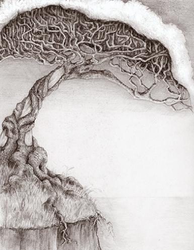 Tree_web