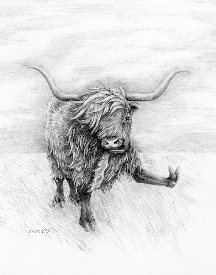 A pencil drawn yak with long horns on a grassy prairie lifts up its front left hoof and give the peace sign with it.